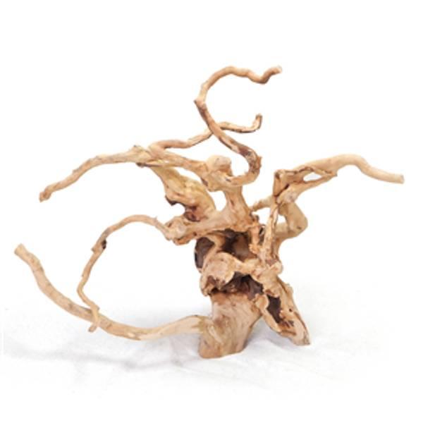 Bilde av Polished root  20 - 30Cm